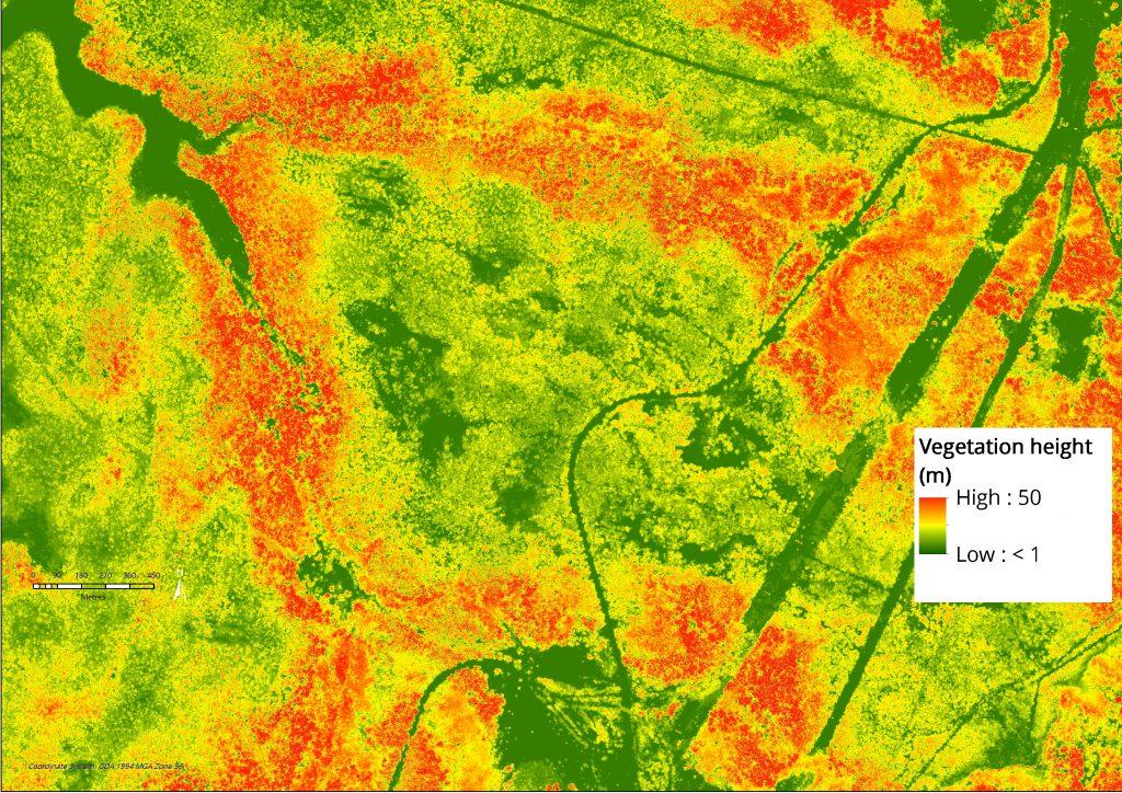 Figure 1 - Relative vegetation height model